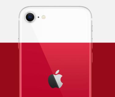 iPhone11とSEのスペックやカメラ性能を比較!今買うなら断然SEをおすすめする理由